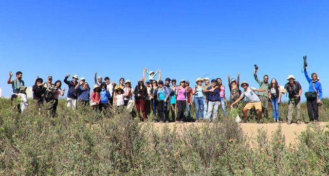Participamos en caminata de observación de aves en La Serena